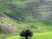 Randonnée Oued Zitoune