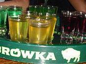petit guide vodkas polonaises