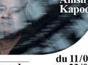 Anish Kapoor Grand Palais pour Monumenta 2011