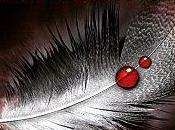 sang anges Chasseuse Vampires Nalini Singh