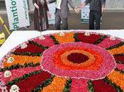 record monde gâteau floral