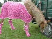 Good as... petit poney lance dans