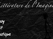 Bilan Swap Littérature l'Imaginaire