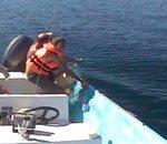 Sauvetage d'une baleine bosse prise piège dans filet pêche