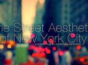 Inspirations Street Aesthetic York Andersen