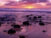 coucher soleil romantique plage Photos