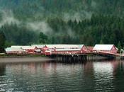 Croisiere Alaska: Straight Point Alias Honnah