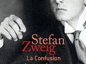 confusion sentiments Stefan Zweig