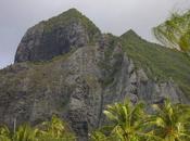 quand politique pito (nombril) Polynésie?