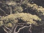 Forestiers Thomas Hardy