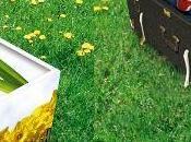 cercueils carton, ecolo jusqu'à mort