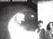 Disque Other Lives Tamer Animals (2011)