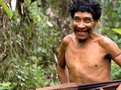 peuples indigènes, meilleurs protecteurs forêts.