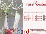 Noël chez rose desbois