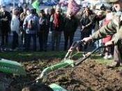 [Multimafieusesnales Brevetage vivant] agriculteurs sèment trouble pour conserver droit semer Voix Nord