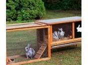 Réaliser cage lapin partir palettes bois