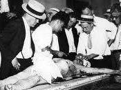toubibs pleins morgue
