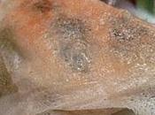 Samoussa truite algues wakamé