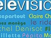 Christophe Beaugrand Dictionnaire malhonnête télévision