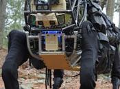 Alphadog mule robotique s'adonne quelques bruyants essais extérieur