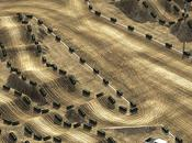 Supercross Diego piste