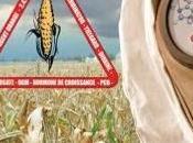 responsabilité Monsanto reconnue dans l'intoxication agriculteur français