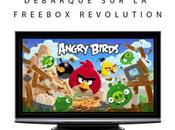 Angry Birds arrive Freebox Revolution