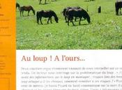Randonner cheval loup l'ours