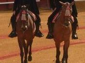 Seville corrida, bien culturel