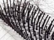 Chute cheveux pelade solution avec l'aromathérapie