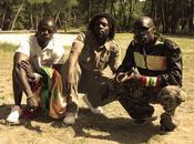 Jamafrica Crew Waxett