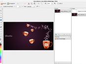 Ubuntu Installer Pinta