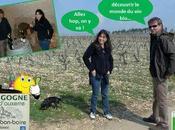 J'ai testé... part belle naturel vigneron (André Donat Domaine Dessus-Bon-Boire)