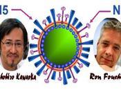 Dangereuses mutations dans labos H5N1