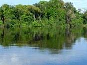Brésil indiens d'Amazonie «voie disparition»?