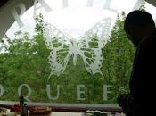 Roquefort Papillon
