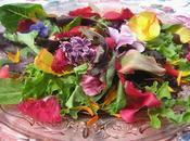 Salade floralie estivale
