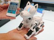 Omnibot I-SODOG robot jouet Tomy désormais propre application