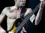 Concert Chili Peppers Paris