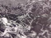 Holocauste joue avec mots