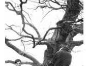 Armand Robin l'ère l'abolition normal
