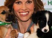 Hilary Swank vient aide chiens errants Roumanie
