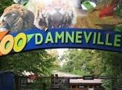 d'Amneville tour France poussettes
