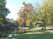 Bordeaux place Code dans parcs