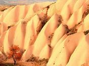 Sites Classés Patrimoine Mondial l'UNESCO Partir Vacances