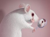rides premières causes mortalité chez souris