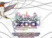 Electric 2012 York