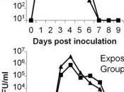 GRIPPE: contagion lieu bien avant premiers symptômes PLOS