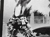 Céline Dion métamorphosée bombe sexy pour Magazine