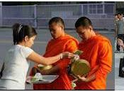 insolites l'actu estivale thaïe